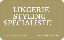 Lingerie Styling Specialist